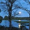 Description - Refuge Under Moonlight <b>Title - Refuge Under Moonlight (waiting for late night canoers)</b> Honorable Mention <i>- Leonard Friedman</i>