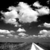 Description - Bike Path On Levee <b>Title - Bike Path On Levee</b> <i>- Jeremy Raines</i>