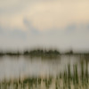 Description - Marsh Through Artist's Lens <b>Title - Pond Memory 2</b> <i>- Dennis Usdan</i>
