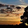 Description - Sunset Over Marsh <b>Title - Loxahatchee Sunset</b> <i>- Jim LaRocco</i>