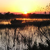 Description - Sunset Over Marsh <b>Title - Colorful Sunset</b> <i>- David Lee</i>
