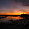 Description - Sunset Over Marsh <b>Title - Lox Sunset</b> <i>- Janet Robinson</i>