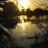 Description - Sunset Over Marsh <b>Title - Water Reflection</b> <i>- David Lee</i>