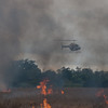 Description - Prescribed Burn of Impoundment <b>Title - The Burn</b> <i>- Janet Robinson</i>