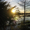 Description - Sunset Over Marsh <b>Title - Peek-a-Boo</b> <i>- David Lee</i>