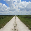 Description - Bike Trail Along Levee <b>Title - Road to the Everglades</b> Honorable Mention <i>- Deborah Moroney</i>
