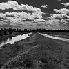 Description - Clouds Over Marsh <b>Title - Natural Leading Lines</b> Honorable Mention <i>- Nubia Richman</i>