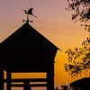 <b>Title - Weather Vane at Sunset</b> <i>- Joan Funk</i>