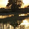<b>Title - Sunset over the Marsh</b> <i>- Beverly Schneider</i>