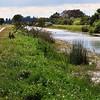<b>Title - Everglades Landscape</b> <i>- Sarah Apicella</i>