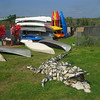 Description - Stone Alligator at Canoe Launch area <b>Title - Gator and Kayaks</b> <i>- Gabriele Little</i>