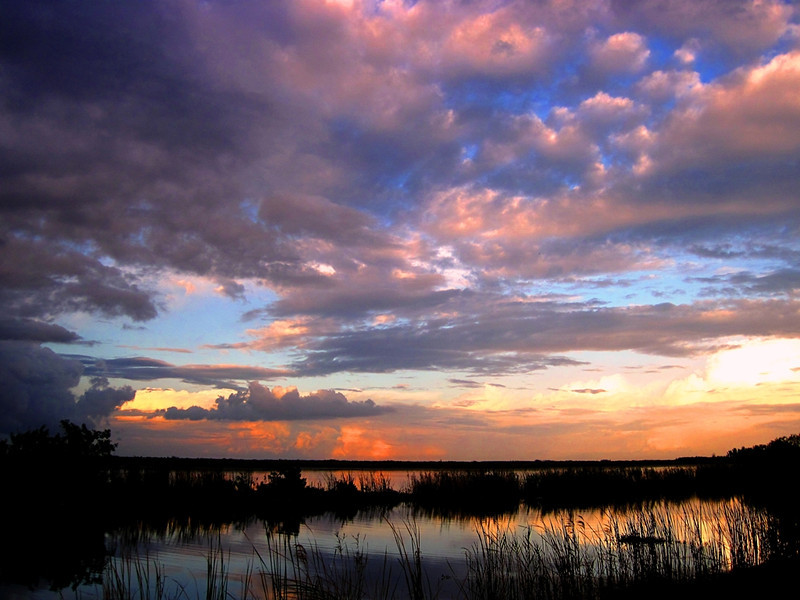 Description - Sunset Over Marsh  <b>Title - Glowing Sunset</b> 1st Place <i>- Leslie Gelman</i>