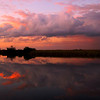 Description - Sunset Over Marsh  <b>Title - Rosy Sunset</b> 2nd Place <i>- Leslie Gelman</i>