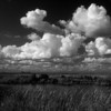 Description - Clouds Over the Marsh  <b>Title - Cloudscape</b> Honorable Mention <i>- Jeremy Raines</i>
