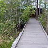 Bird Blind Boardwalk