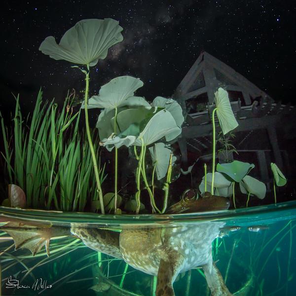 Studio at night