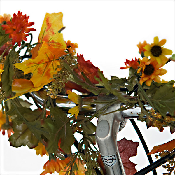 """Day 04 - Personalized  I found this personalized bike at the local bus""""station"""". Painting and or decorating your bike is a way to express yourself but also used to prevent your bike from being stolen."""