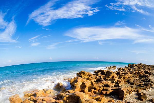 Palm Beach Post 2014