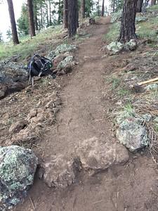 Wilderness Volunteers: 2016 Continental Divide Trail Service Trip