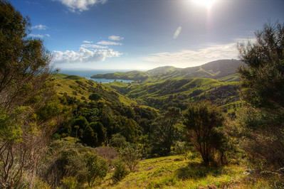 New Zealand: The Coromandel Peninsula (HDR) Rugged green hills meet the Pacific Ocean on the Coromandel Peninsula in New Zealand.