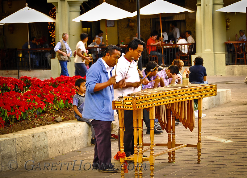 Street Musicians in Central Plaza of Oaxaca
