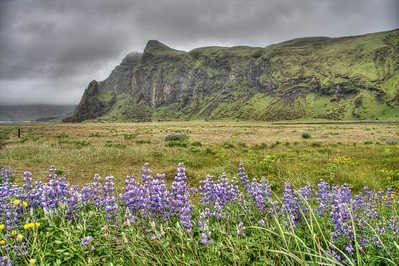 Route 1 - the Ring Road - in South Iceland (HDR)