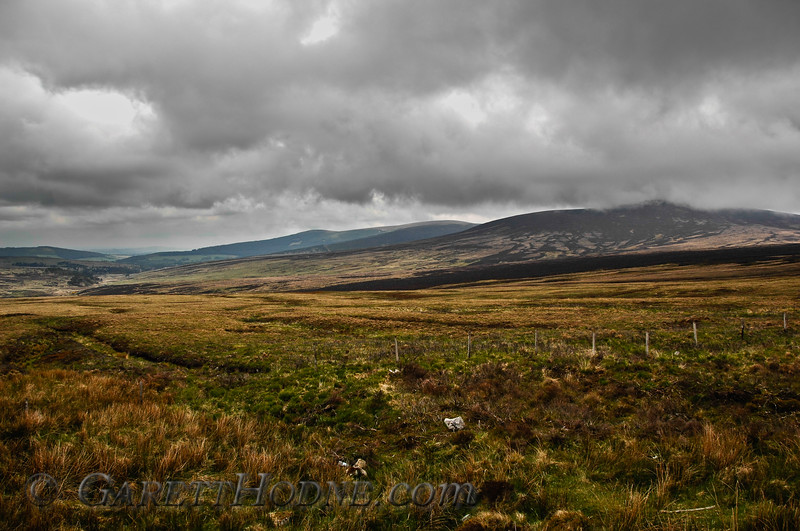 Peat bogs on top of the Wicklow Mountains