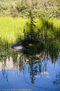 refelections in Mountain Lake in Jasper Nat'l Park, Alberta, CA