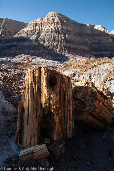 Petrified Forest National Park, Blue Mesa  Filename: CEM008335-PetrifiedForestNP-AZ-USA.jpg
