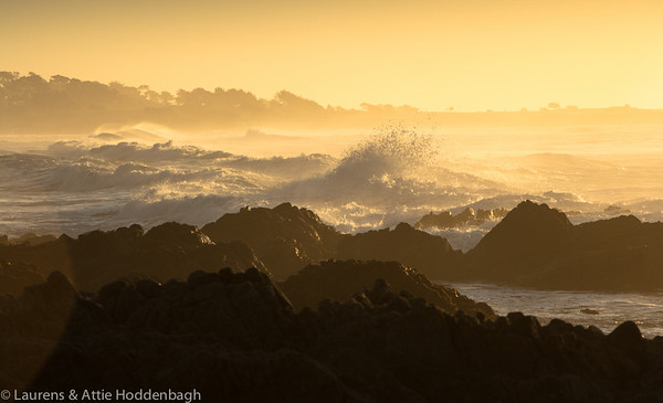 Sunset at Asilomar State Beach near Monterey, California, USA  Filename: CEM010980-Monterey-CA-USA.jpg