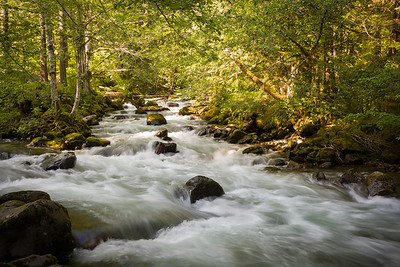 Skate Creek at N-52 near Mount Rainier Nat'l Park, OR, USA