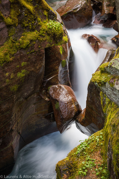 Avalanche Creek at Trail of the Cedars, Glacier National Park, Montana  Filename: CEM06410-GlacierNP-MT-USA.jpg