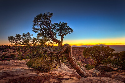 Canyonlands National Park, Grand View Point