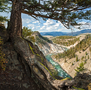 Yellowstone River at the Narrows