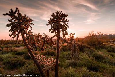 Sunset at Lost Dutchman SP, AZ