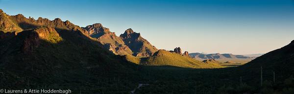 Panorama Organ Pipe Cactus National Monument