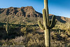 Gate Pass at Tucson Mountain Park