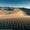 "Mesquite Dunes at Death Valley, CA  <div class=""ss-paypal-button"">Filename: CEM012998-99-DeathValley-CA-USA-3.jpg</div><div class=""ss-paypal-button-end"" style=""""></div>"