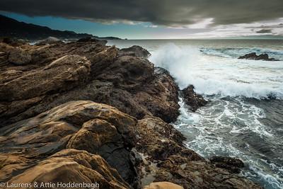 State Park Point Lobos