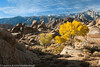 Fall at Alabama Hills at Lone Pine, CA