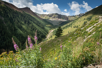 County Rd 8, Ophir Pass, From Silverton to Telluride, CO, USA  Filename: CEM014611-SanJuanNF-CO-USA.jpg