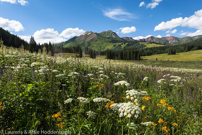 County Road 317 North of Crested Butte, CO, USA  Filename: CEM014129-CrestedButte-CO-USA.jpg