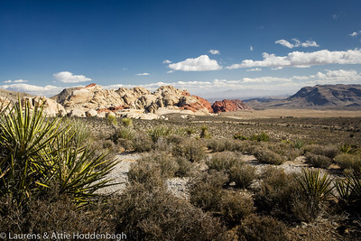 Red Rock Canyon National Conservation Area, Nevada  Filename: CEM007741-RedRockCanyon-NV-USA.jpg