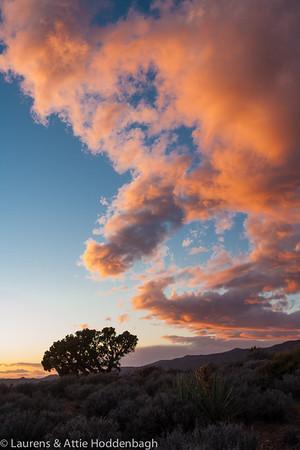 Sunset at Petere Cox at Lovell Canyon Road, Nevada  Filename: CEM007757-LovellCanyonRoad-NV-USA.jpg