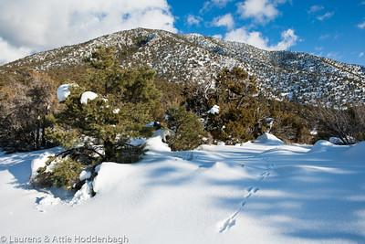 Area around Pahrump, covered with snow  Filename: CEM007978-Pahrump-NV-USA.jpg