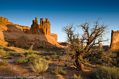 Three Gossips, Arches NP, Utah  Filename: CEM005164-Arches_NP-UT-USA.jpg