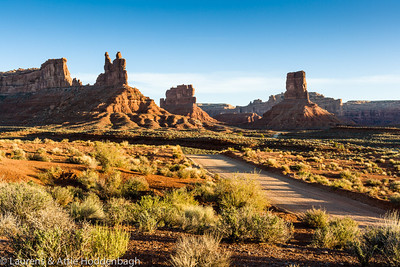 Valley of the gods, Utah  Filename: CEM004940-ValleyOfTheGods-UT-USA.jpg