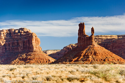 Valley of the gods, Utah  Filename: CEM004951-ValleyOfTheGods-UT-USA.jpg