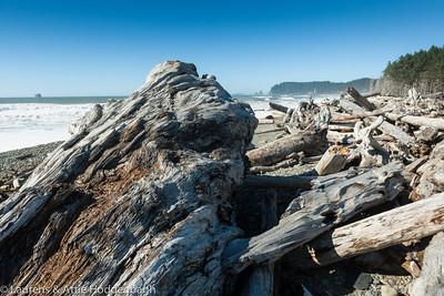 Driftwood at First Beach near La Push, Olympic nat'l Park