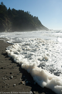 Sea Foam at First Beach near La Push, Olympic Nat'l Park